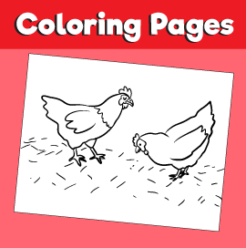 Chickens-animal-coloring-pages-