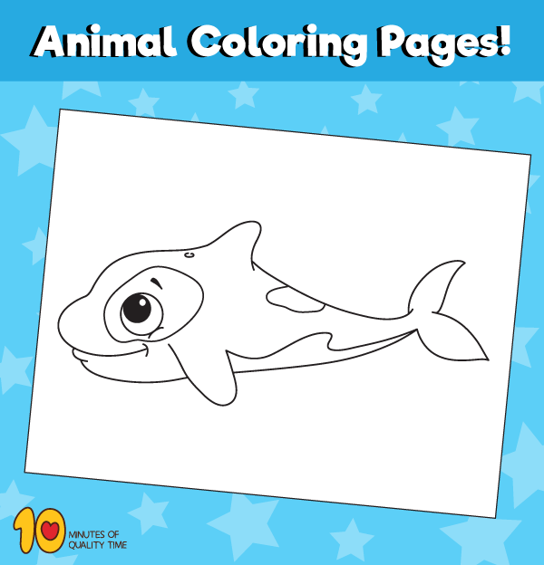 Killer-whale-animal-coloring-pages