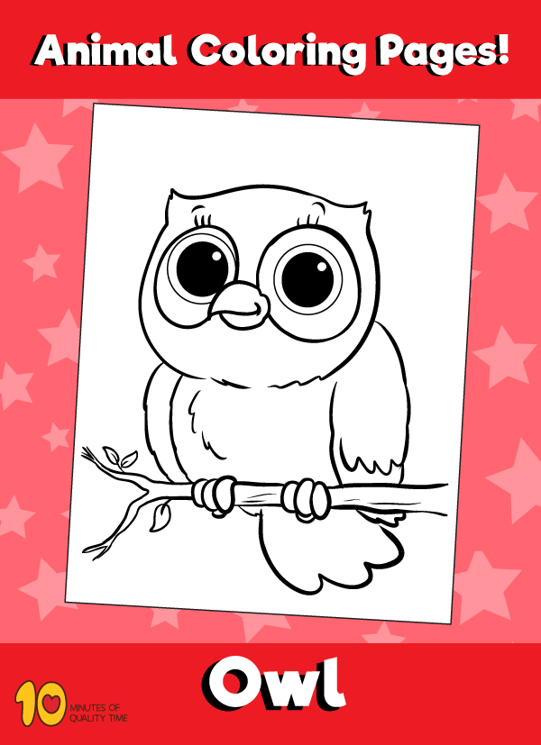 Owl-animal-coloring-pages-