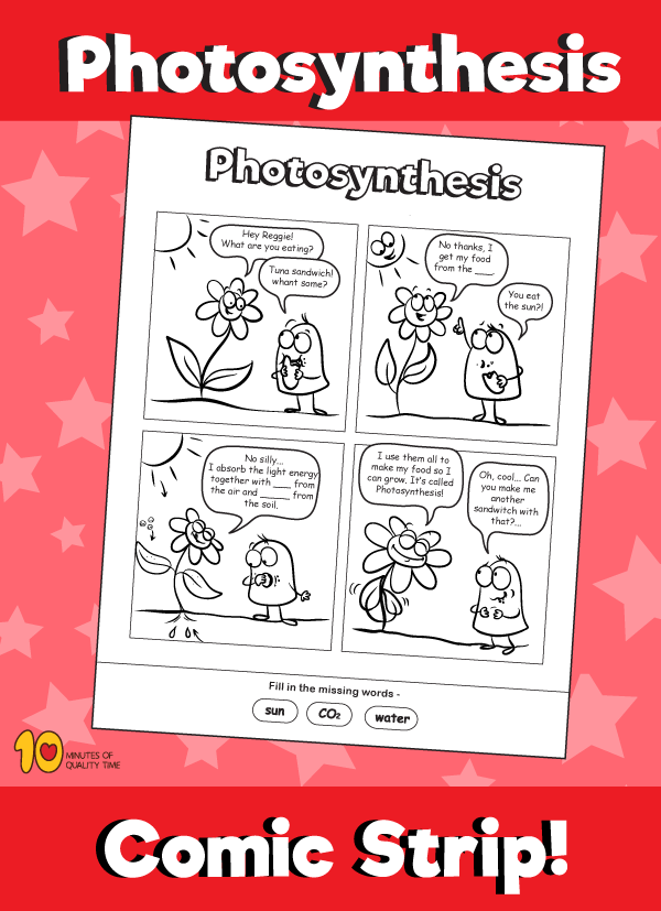 Photosynthesis Comic Strip 10