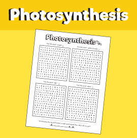 Photosynthesis - Word Search