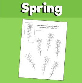 Spring Find a Match Flower