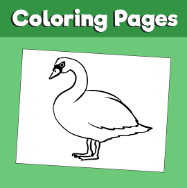 Swan-animal-coloring-pages