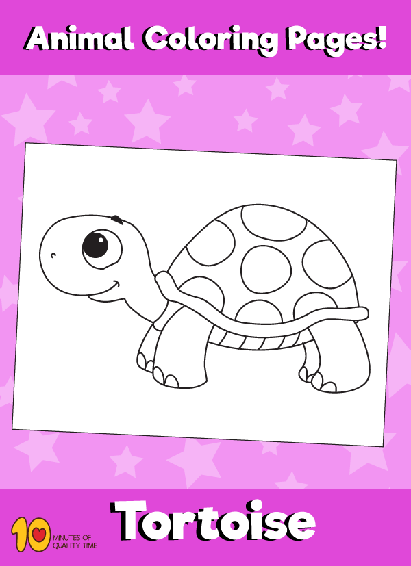 Tortoise Animal Coloring Page