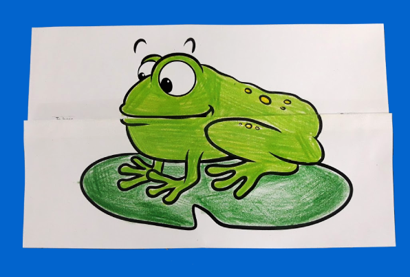 Frog Eating Fly Surprise Folding Paper 10 Minutes Of