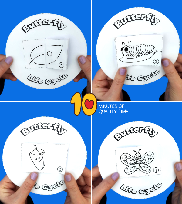 butterfly life cycle craft for kindergarten