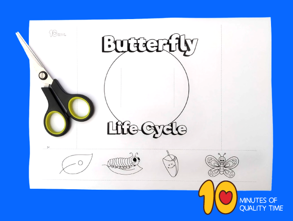 butterfly life cycle craft pinterest