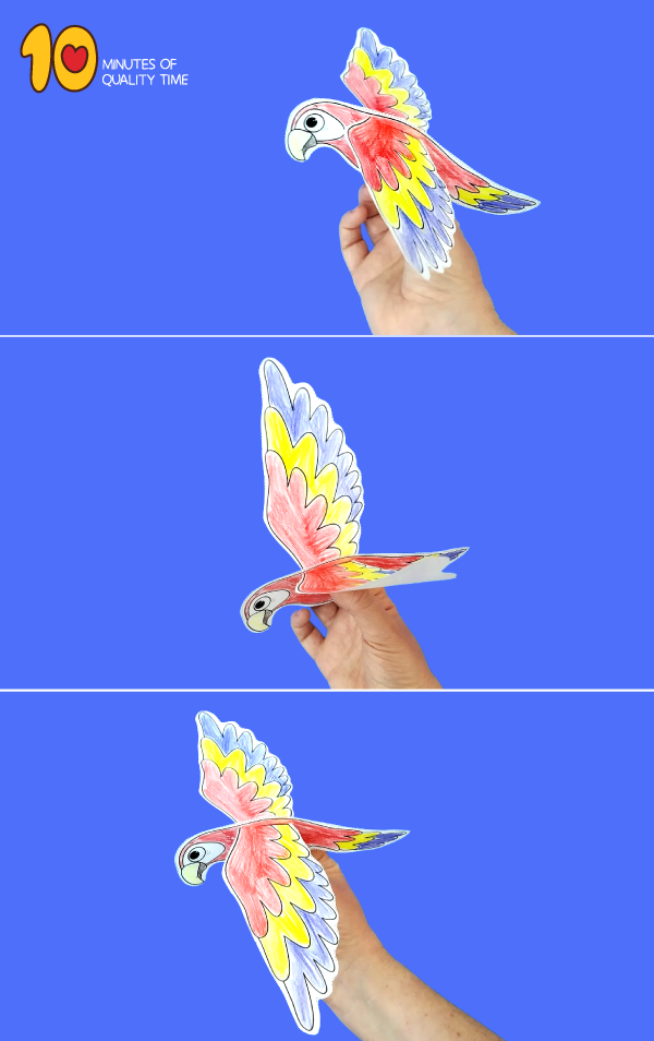 parrot craft for preschoolers